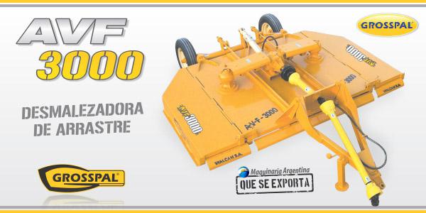AVF 3000